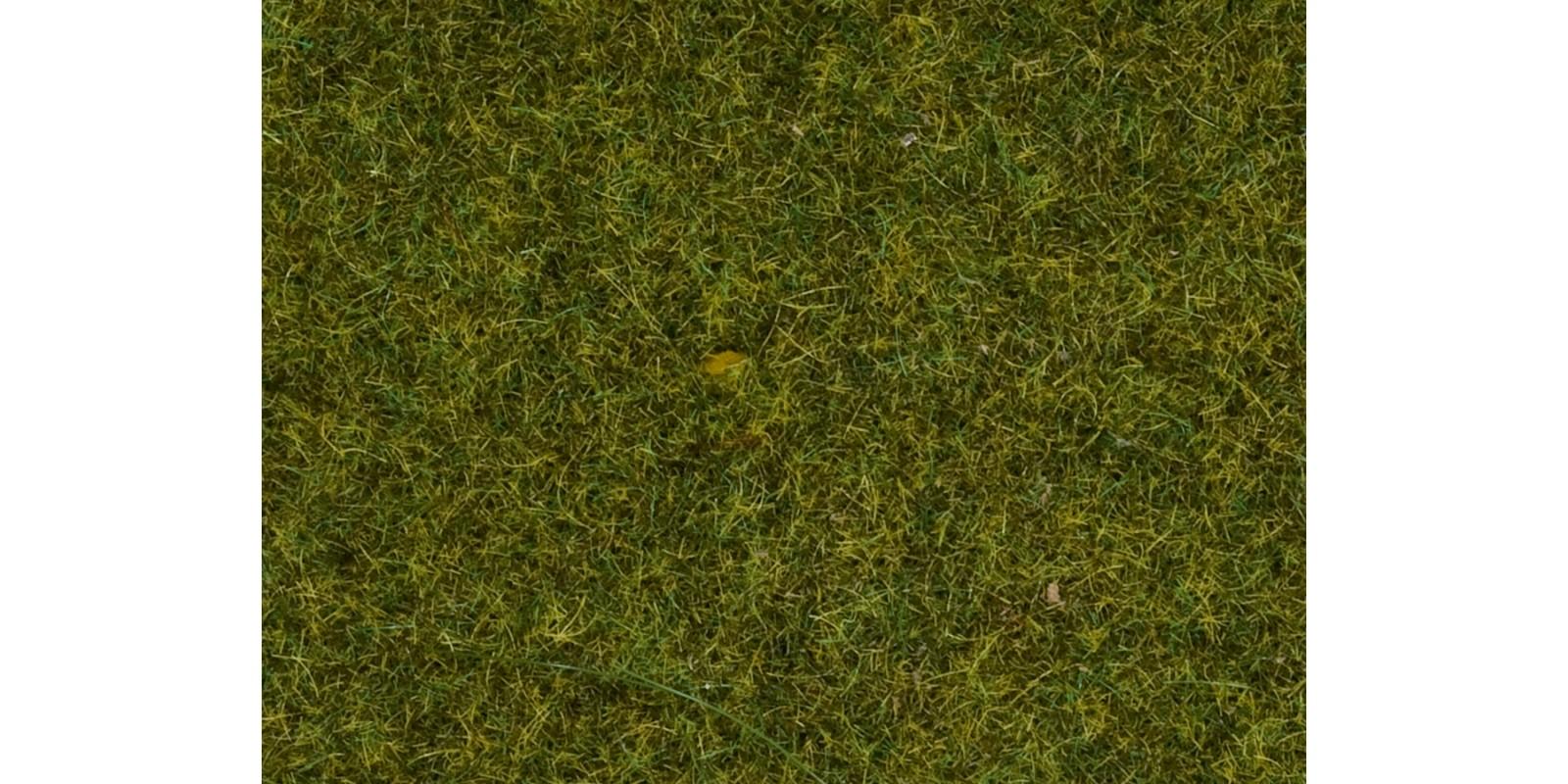 """NO07117 Wild Grass """"Medow"""""""