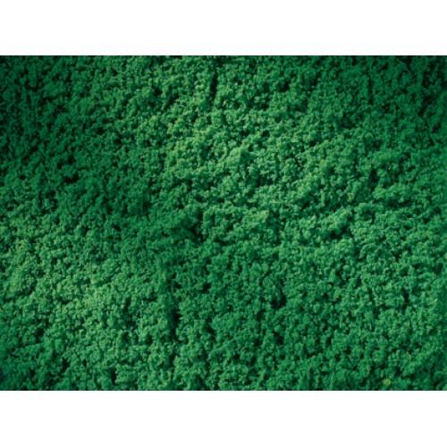 AU76670 Lawn roll dark green