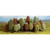 Δέντρα & Θάμνοι