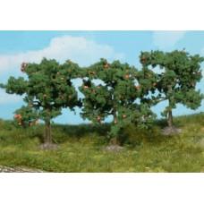 He1160 / 3 Apfelbäume 8 cm