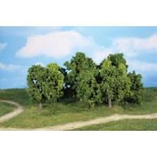 HE1992 14 Leaf trees, 5-12 cm