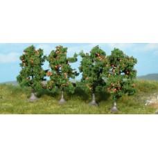 HE1961 Apple trees