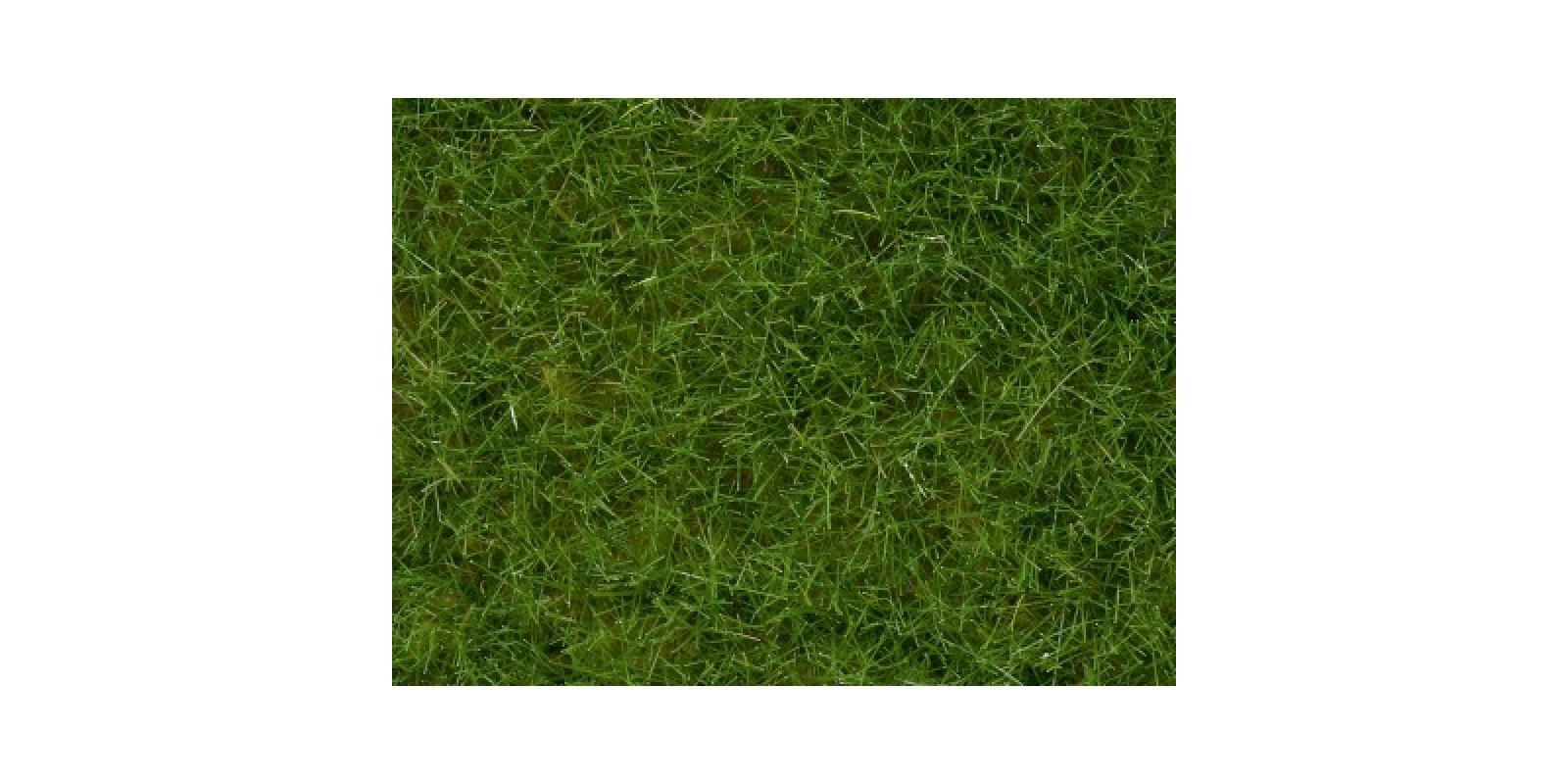 No07092 Wild Grass, light green, 6 mm