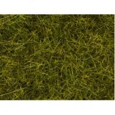 No07095 Wild Grass XL Meadow, 12 mm