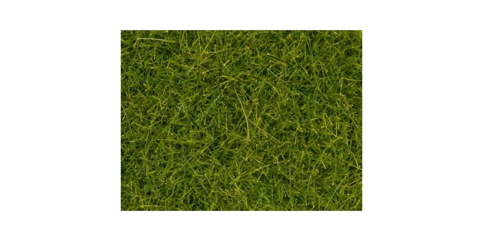 No07097 Wild Grass XL, light green, 12 mm