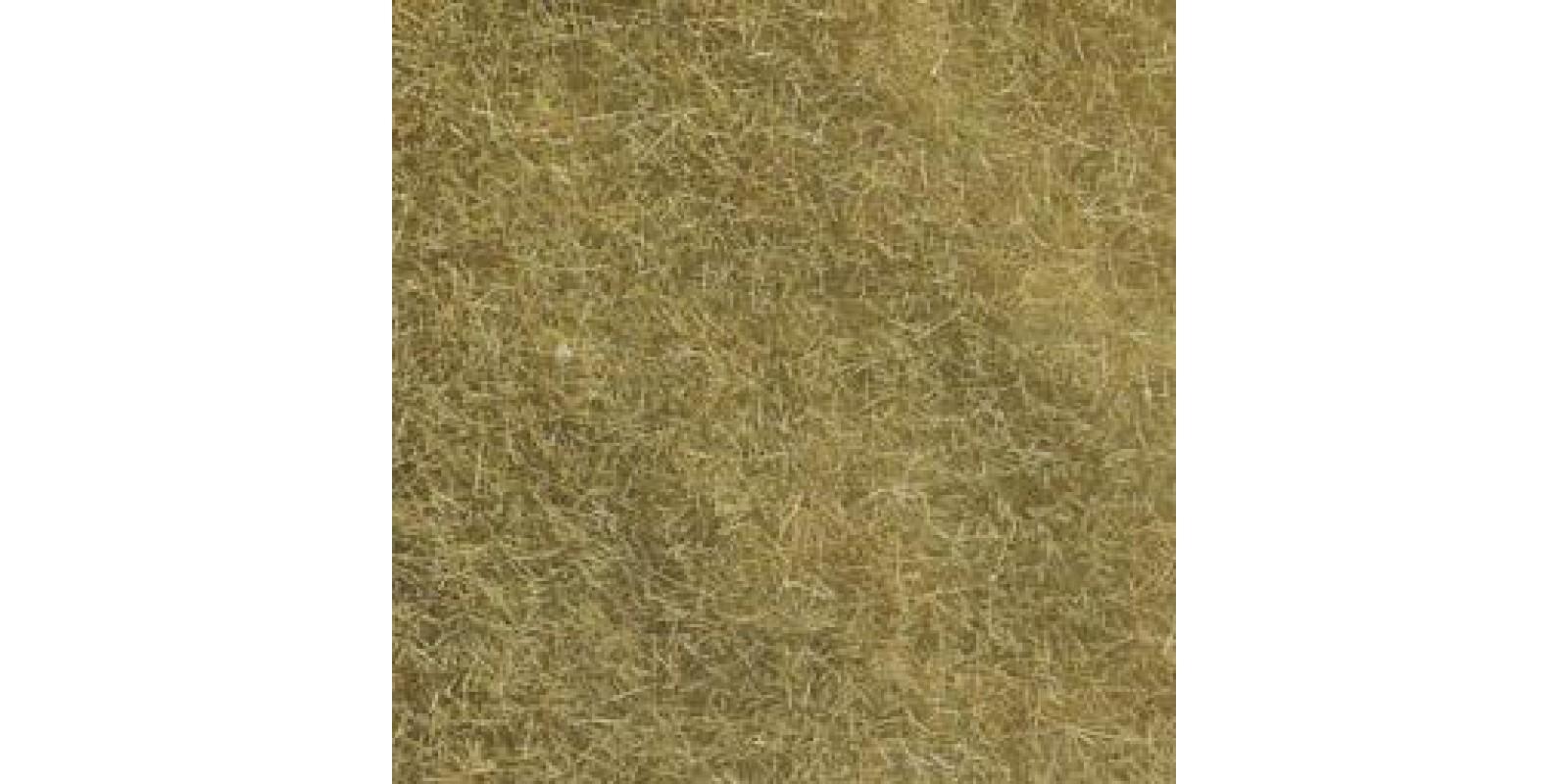 NO07101 Wild Grass beige, 50g
