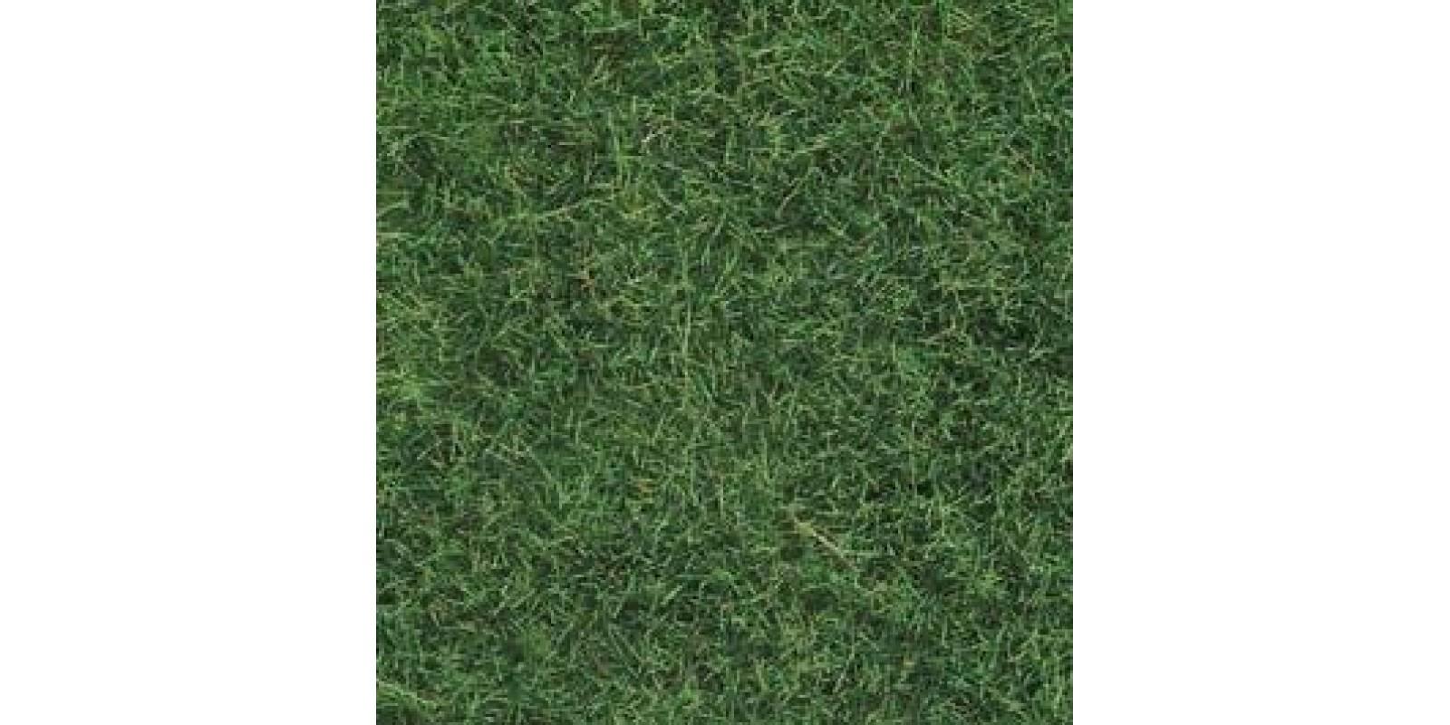 No07102 Wild Grass light green, 50 g