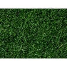 NO07106 Wild Grass, Dark Green, 6 mm
