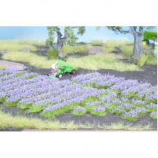 No07136 Lavendel