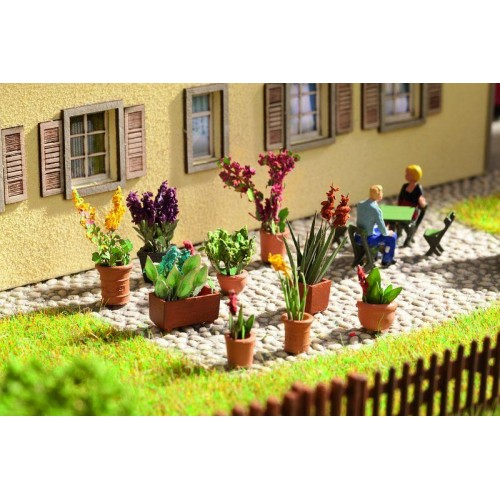 No14012 Ornamental Plants, in flower pots, 9 pcs.