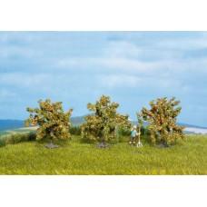 No25114 Orange Trees, 3 pcs., 40 mm
