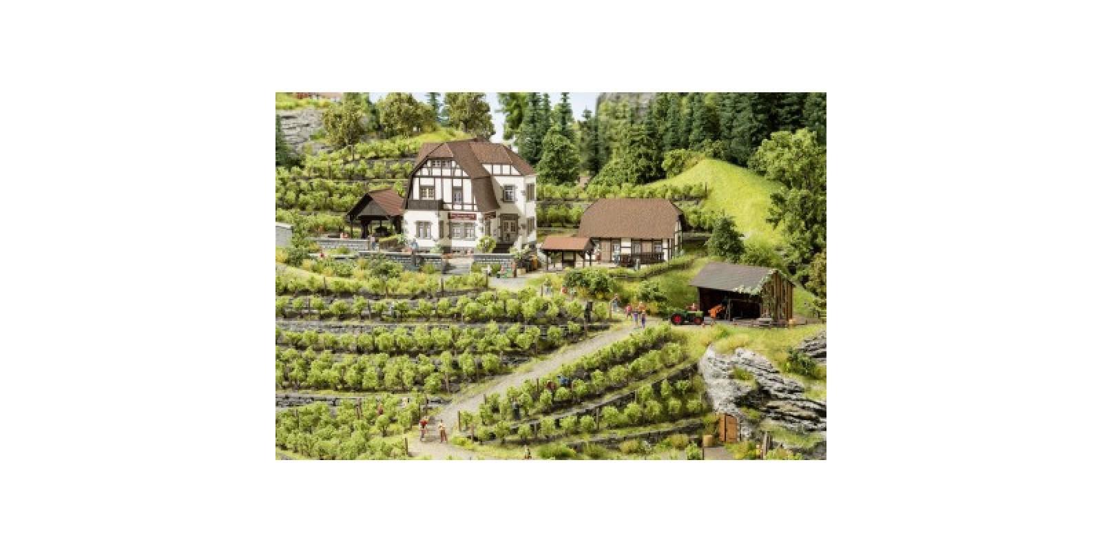 "No66712 Winery ""Hauser-Buehler"""