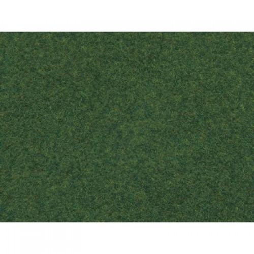 NO07081 Wild Grass